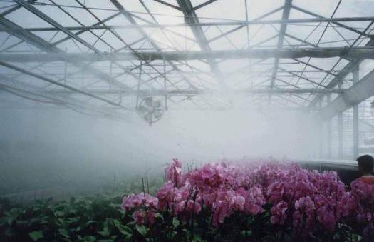 大棚喷雾降温