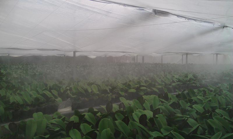温室喷雾加湿